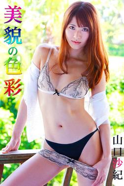 限界☆グラビアガールズ 山口沙紀-美貌の色彩--電子書籍