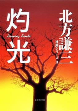 灼光 神尾シリーズ2-電子書籍