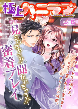 極上ハニラブ vol.6【見られちゃう!!聞かれちゃう!?密着プレイ】-電子書籍