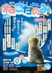 月刊ねこだのみ vol.11(2016年10月28日発売)