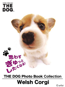 THE DOG Photo Book Collection Welsh Corgi-電子書籍