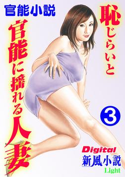【官能小説】恥じらいと官能に揺れる人妻03-電子書籍
