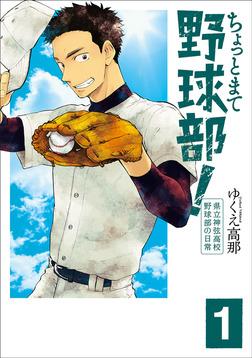 ちょっとまて野球部!―県立神弦高校野球部の日常― 1巻-電子書籍