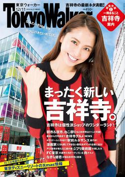 TokyoWalker東京ウォーカー 2014 No.21-電子書籍
