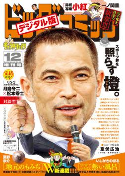 ビッグコミック増刊 2020年12月増刊号(2020年11月17日発売)-電子書籍