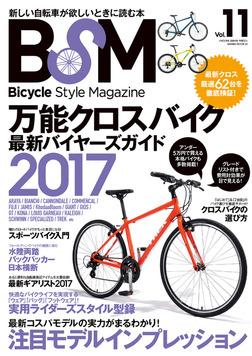 BSM vol.11-電子書籍