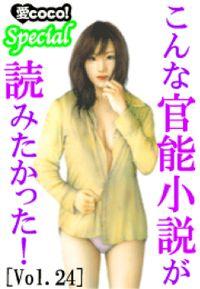 こんな官能小説が読みたかった!vol.24