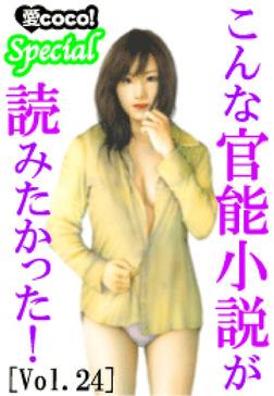 こんな官能小説が読みたかった!vol.24-電子書籍