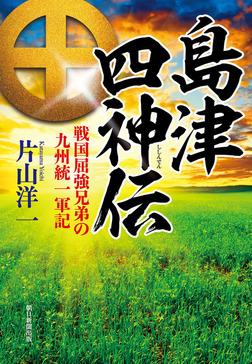 島津四神伝 戦国屈強兄弟の九州統一軍記-電子書籍