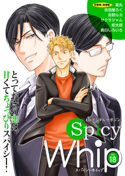 Spicy Whip vol.18-電子書籍