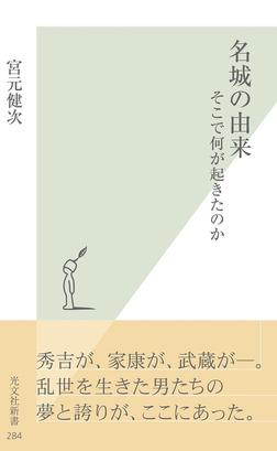 名城の由来~そこで何が起きたのか~-電子書籍