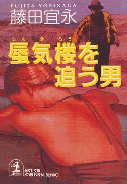 蜃気楼を追う男-電子書籍