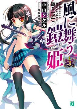 風に舞う鎧姫 3-電子書籍