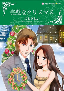 完璧なクリスマス-電子書籍