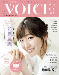 VOICE Channel Vol.11-電子書籍