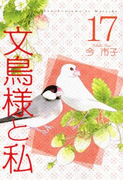 文鳥様と私(17)-電子書籍