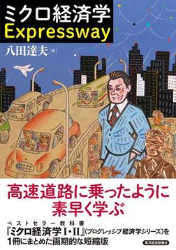 ミクロ経済学 Expressway-電子書籍