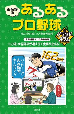 みんなの あるあるプロ野球 グランドスラム-電子書籍