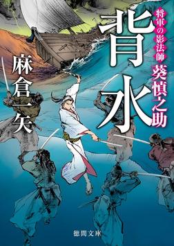 将軍の影法師 葵慎之助 背水-電子書籍