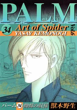 パーム (34) 蜘蛛の紋様 VI-電子書籍