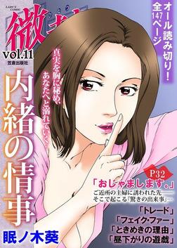 微熱vol.11 内緒の情事-電子書籍