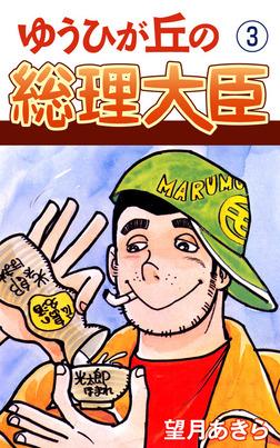 ゆうひが丘の総理大臣(3)-電子書籍