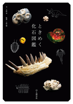 ときめく化石図鑑-電子書籍