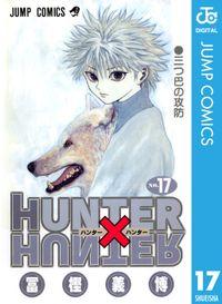 HUNTER×HUNTER モノクロ版 17
