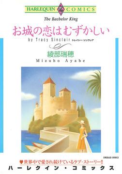 お城の恋はむずかしい-電子書籍